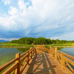 北京·野鸭湖
