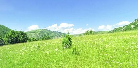塞尔维亚·Uvac河峡谷